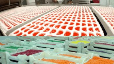 Photo of Accel exporta a Estados Unidos casi todos los dulces que produce en México