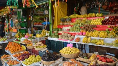 Photo of Importaciones de alimentos en el mundo suben 6% en 2017: FAO