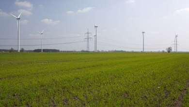 Photo of Alemania bloquea a empresa china para compra de firma de electricidad