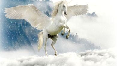 Photo of Las 10 mayores empresas unicornio del mundo