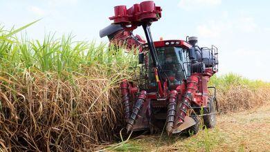 Photo of La SE difunde cupo extraordinario para exportar azúcar a EU