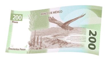 Photo of El peso gana y se acerca al nivel de 19 unidades por dólar