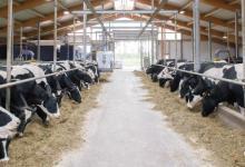 Photo of Canadá aplica altos aranceles a sus importaciones agrícolas
