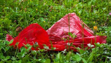 Photo of Ven oportunidades en el reciclaje del plástico en México y la UE