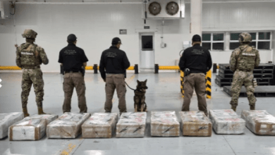 Photo of Manzanillo Customs: 678 kilos of cocaine seized