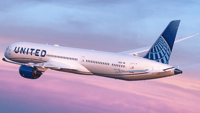United Airlines Holdings reported that it will buy 17 used Airbus A319 planes to try to sell them later.