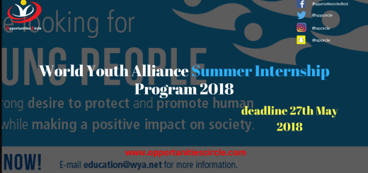 World Youth Alliance summer internship