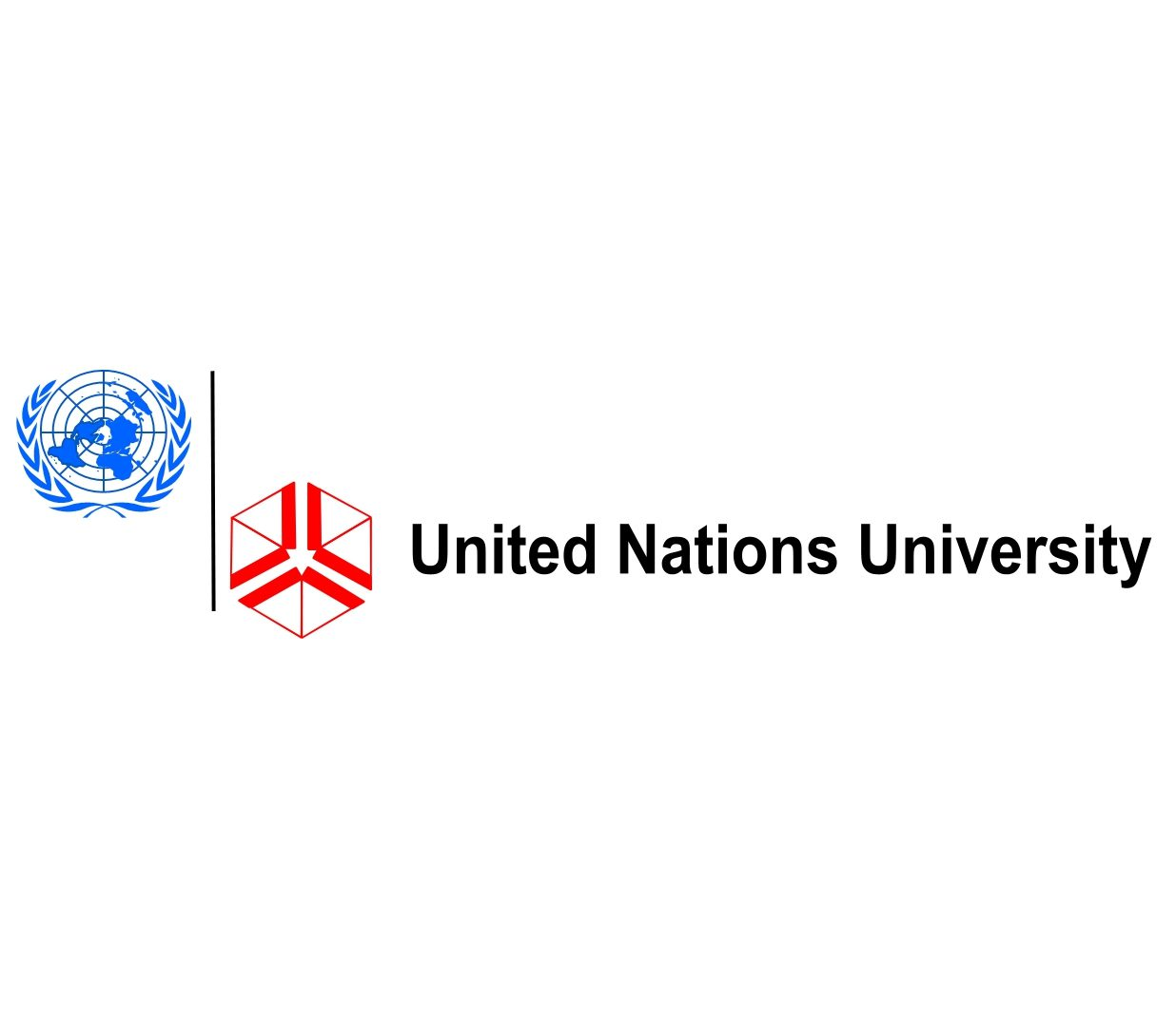 2015 Junior Fellows Internship Programme at United Nations