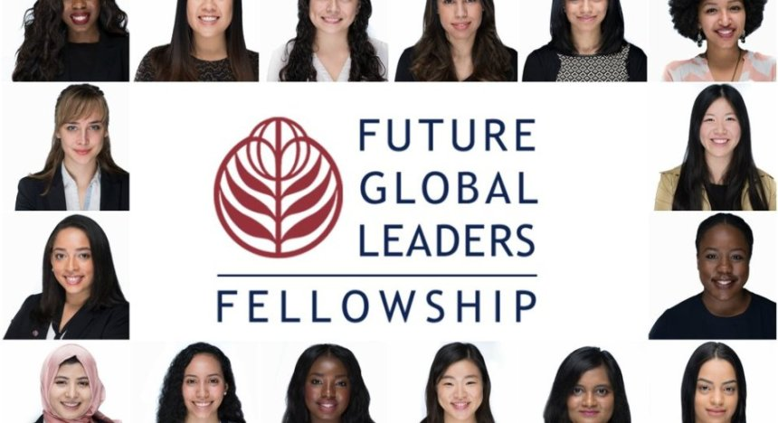 "Résultat de recherche d'images pour ""Future Global Leaders Fellowship in USA"""