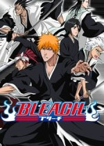 Bleach Episode 01-366 Lengkap Subtitle Indonesia