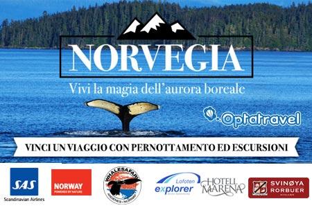 concorso edreams vinci norvegia