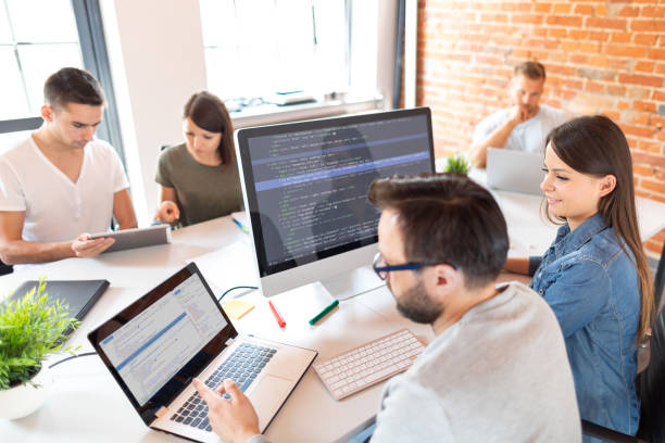Web Developers Contribute a Lot in the Success of Software Development