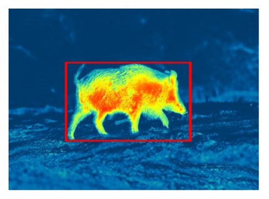 Mobilna aplikacija Pulsar Stream Vision 2 - Senzor gibanja (vir slike: Pulsar)