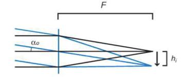Infinite Conjugate System