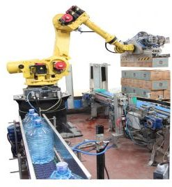 Box-Bottle Hybrid Palletizing Robotic Lines