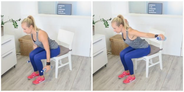seated-reverse-fly
