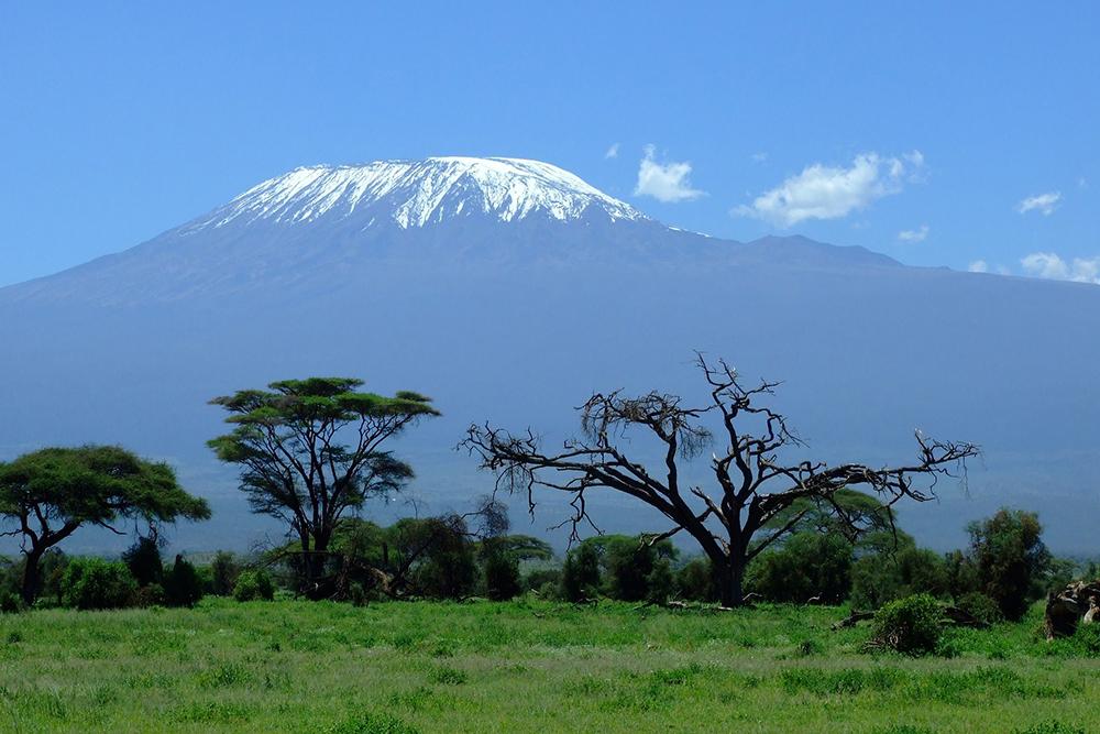 The next adventure: Kilimanjaro awaits