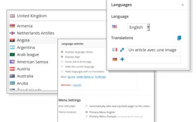 Excelente plugin para sitio web multilenguaje en WordPress