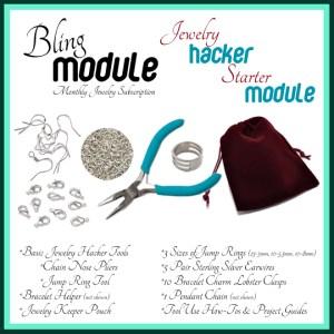 Bling Module Hacker Starter Module