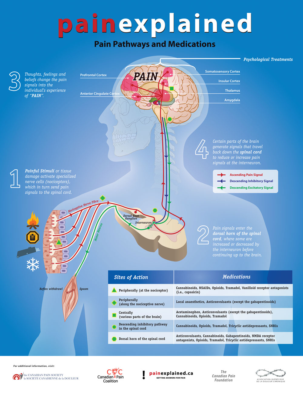 hight resolution of pain explained