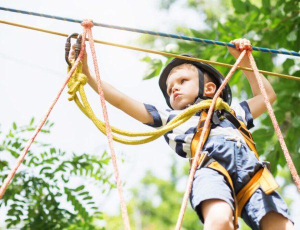 klimparken-klimbossen-jonge-kinderen-4-5-jaar