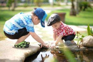 speelbossen-natuurspeeltuinen-limburg