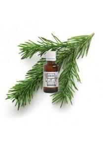 huile-essentielle-pin-de-siberie-sapin-de-siberie