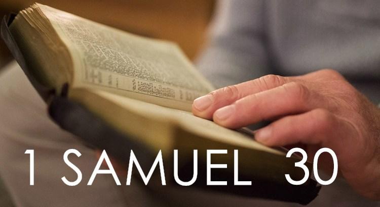 1 SAMUEL 30