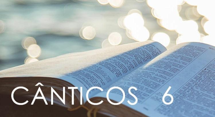 CÂNTICOS 6
