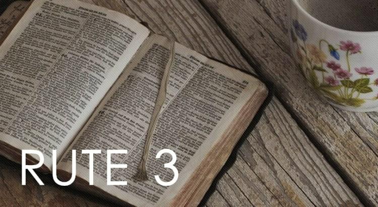 Rute 3