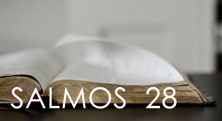 SALMOS 28