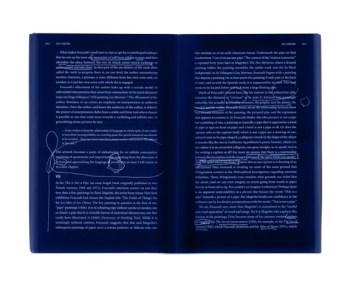 reading... Art and Ventriloquism by David Goldblatt p. 80-81/Elizabeth Leach Gallery