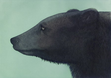 """""""Brown Bear,"""" 1985. Edition of 50. Aquatint, drypoint, and etching with roulette, inked à la poupée, hand colored with watercolor, 14 3/8 x 20 1/4 inches."""