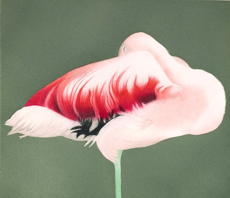 """Flamingo Sleeping,"" 1988, Edition of 30. Aquatint and drypoint with roulette, 13.25 x 11.5 inches. All images © E. Mark Adams and Beth Van Hoesen Adams Trust. Courtesy Pomegranate Communications, Inc. All rights reserved."