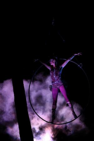 A-WOL takes its circus to the trees in Art in the Dark.
