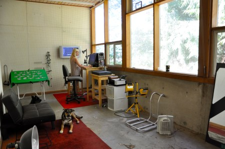 In her Eugene, Oregon studio, Julia Oldham works under the watchful eye of her two dogs. Image Sabina Poole.