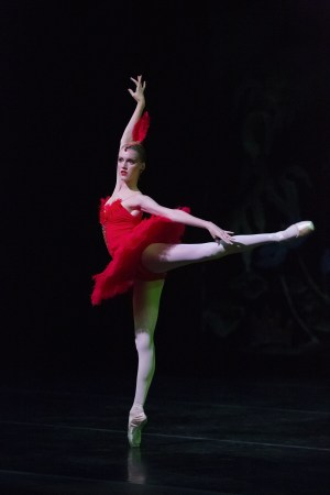 """Firebird"" Performance,The Portland Ballet"