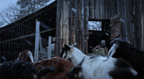 """""""Boone,"""" by Christopher LaMarca and Katrina Taylor, screening Wednesday at the Northwest Film Center."""