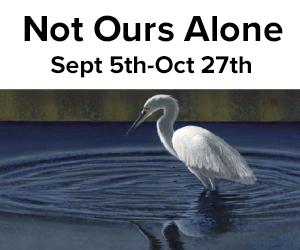 Elisabeth Jones Not Ours Alone