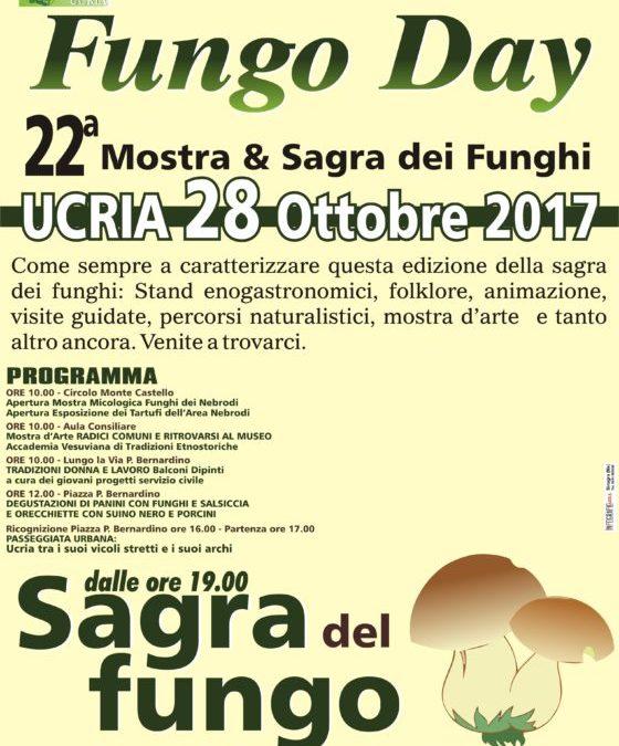 Ucria. Torna 'Fungo Day', 22a mostra e sagra dei funghi