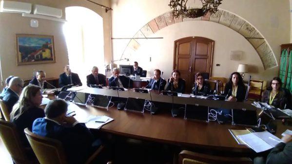 """Regione. ARS, Commissione randagismo incontra associazioni, On. Calderone: """"Business randagismo deve finire"""""""