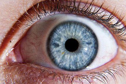 Human_eye_node_full_image_2