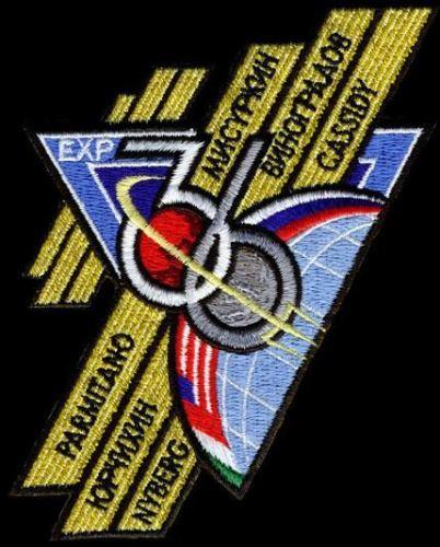 Emblema Expedição 36