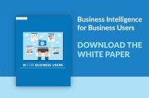 White Paper Bi Business Users Orbit Reporting - Year of