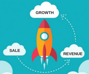 Image result for growth and revenue