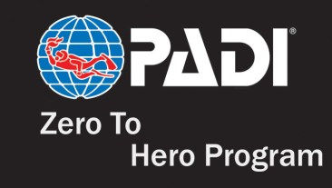 zero to hero program internhip
