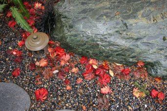 Autumn 93 Hunziker (6)
