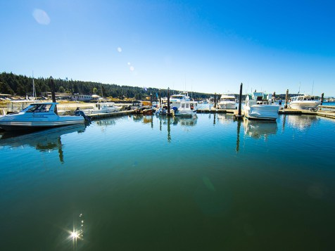 Fisherman's Bay Marina