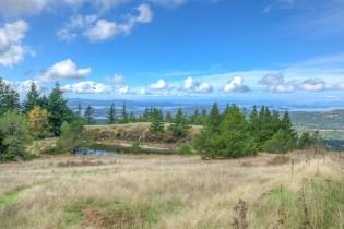 Mt. Woolard Orcas