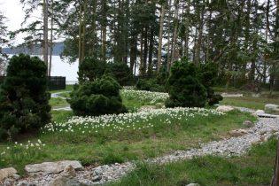 Spring 93 Hunziker (4)